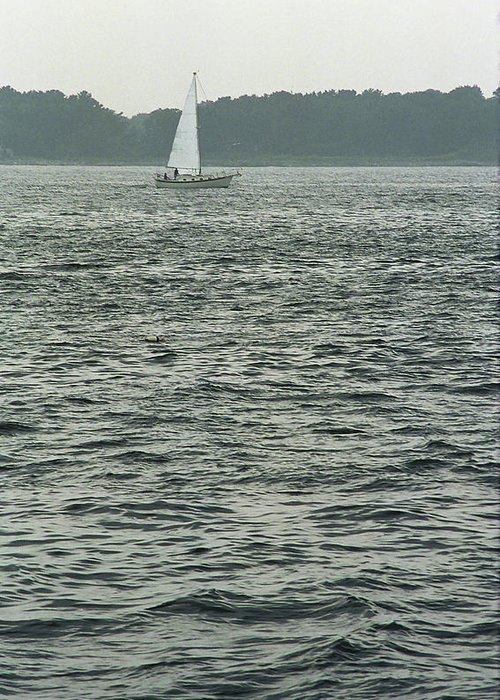 Adventure Greeting Card featuring the photograph Sailboat And Waves, Piscataqua River, Maine 2004 by Frank Romeo