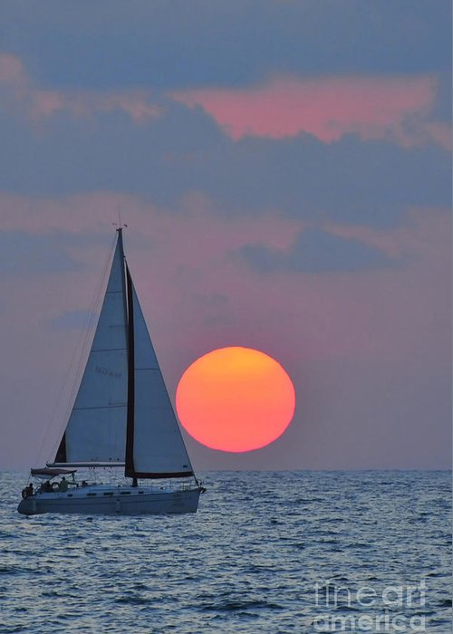 Sail Boats Greeting Card featuring the photograph Sailboat At Sunset by Shay Levy