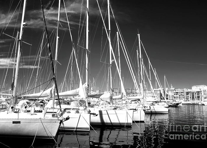 Sailboats Docked Greeting Card featuring the photograph Sailboats Docked by John Rizzuto