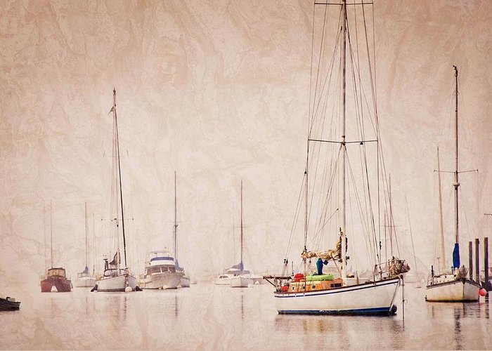 Sailboats Greeting Card featuring the photograph Sailboats in Morro Bay Fog by Zayne Diamond Photographic