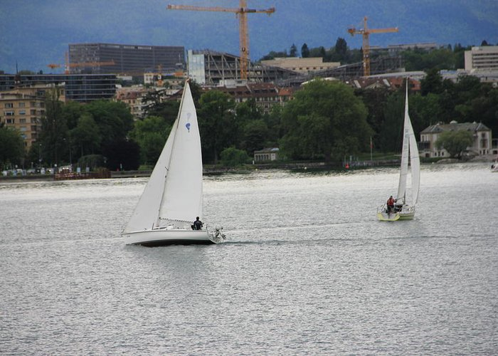 Geneva Greeting Card featuring the photograph Sailboats by Nurlan Alymbaev