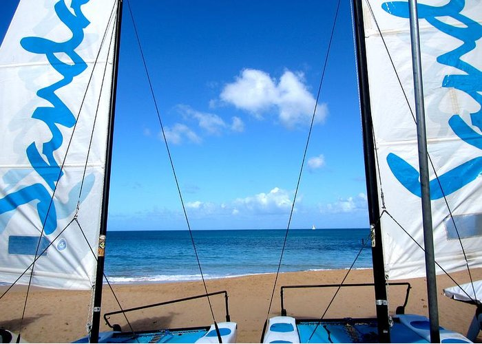 Sailing Greeting Card featuring the photograph Sailing by Angela Niesz