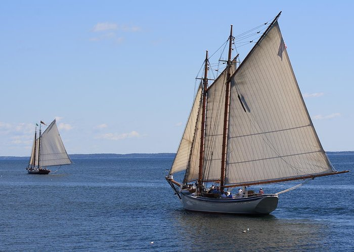 Seascape Greeting Card featuring the photograph Sailing Downeast by Doug Mills