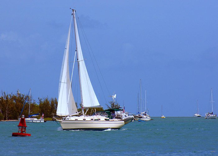 Florida Greeting Card featuring the photograph Sailing The Keys by Maria Keady