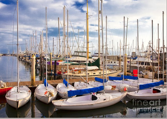 Anchored Greeting Card featuring the photograph Sailoats Docked In Marina by David Buffington