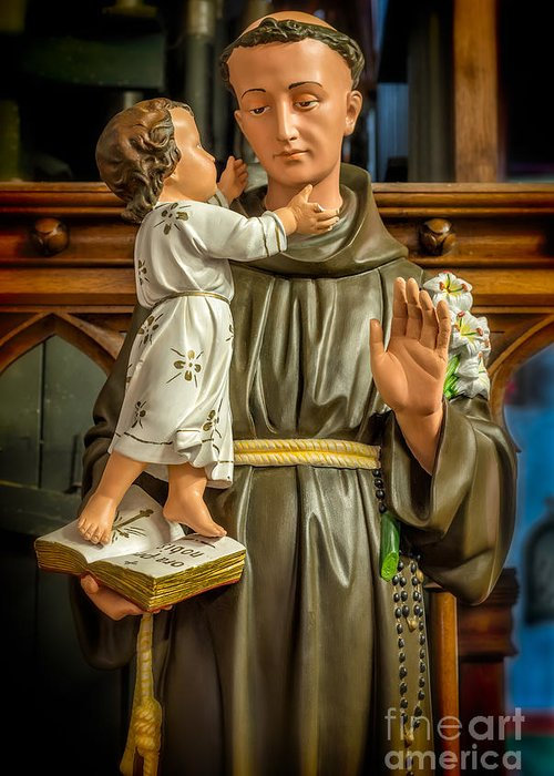 Franciscan Saints Greeting Cards