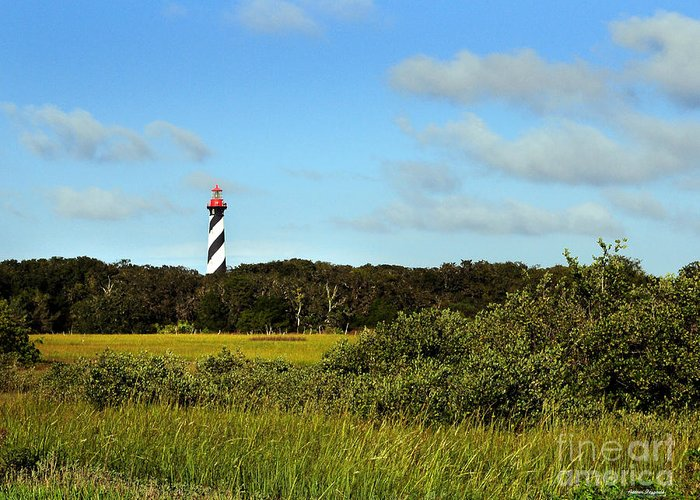 Marsh Greeting Card featuring the painting Saint Augustine Lighthouse by Addison Fitzgerald