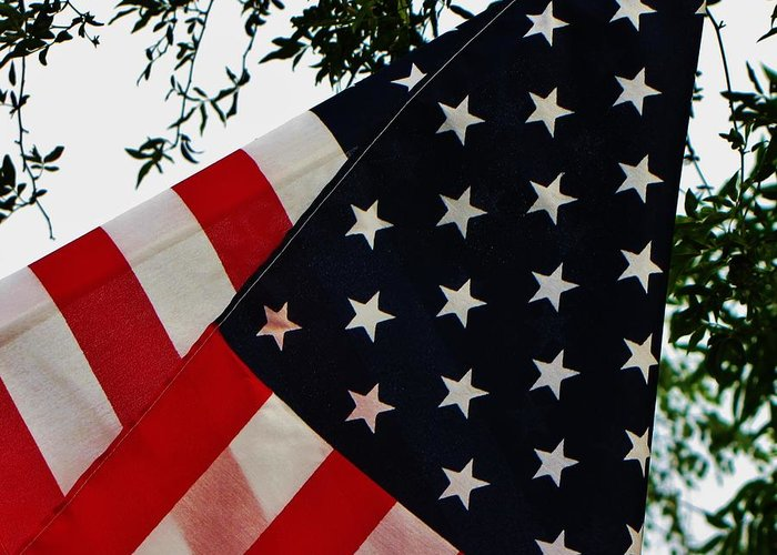 Patriotic Greeting Card featuring the photograph Salute by Torie Beck