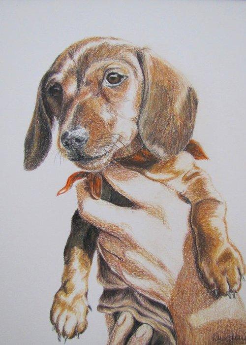 Puppy Greeting Card featuring the drawing Sambo by Karen Ilari