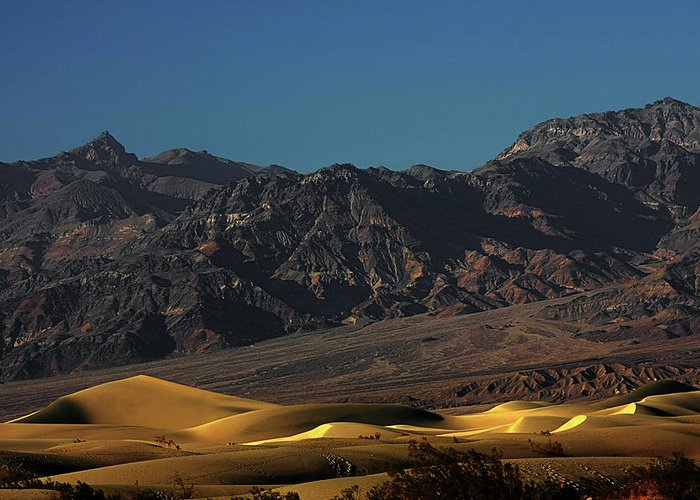 Eath Valley National Park Greeting Card featuring the photograph Sand Dunes - Death Valley's Gold by Christine Till
