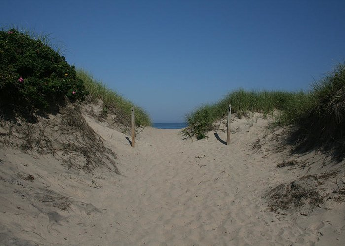 Beach Greeting Card featuring the photograph Sand Dunes Iv by Jeff Porter