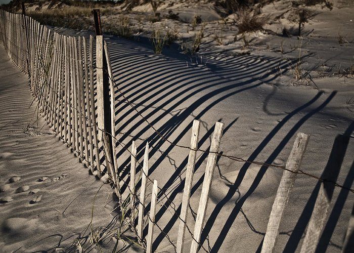 Sand Greeting Card featuring the photograph Sand Fence by Joel P Black