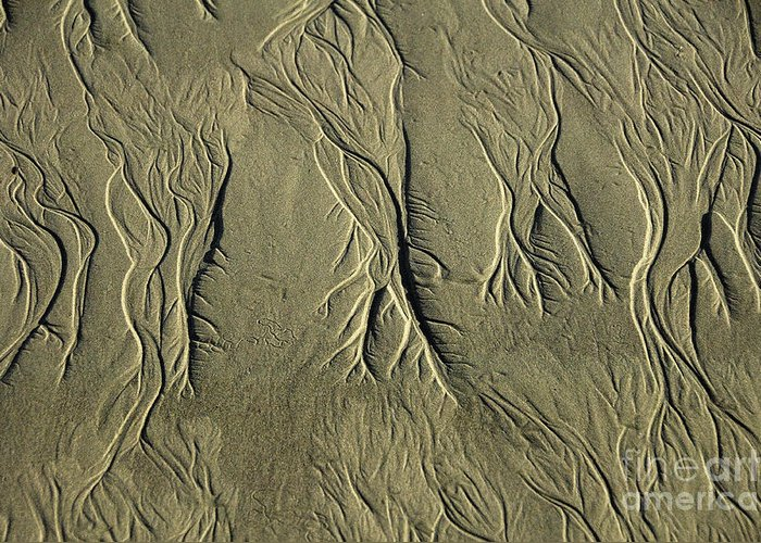 Sand Pattern Greeting Card featuring the photograph Sand Pattern by Marc Bittan