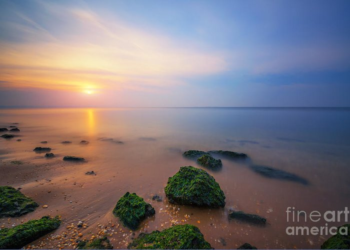 Low Tide Sunset Greeting Card featuring the photograph Sandy Hook New Jersey Sunset by Michael Ver Sprill