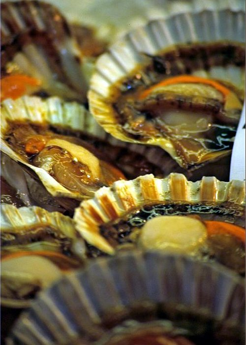 Venice Greeting Card featuring the photograph Scallops At Rialto Market In Venice by Michael Henderson