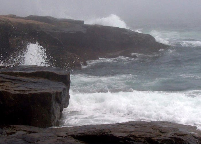 Waves Greeting Card featuring the photograph Schoodic Point by Lisa Kane