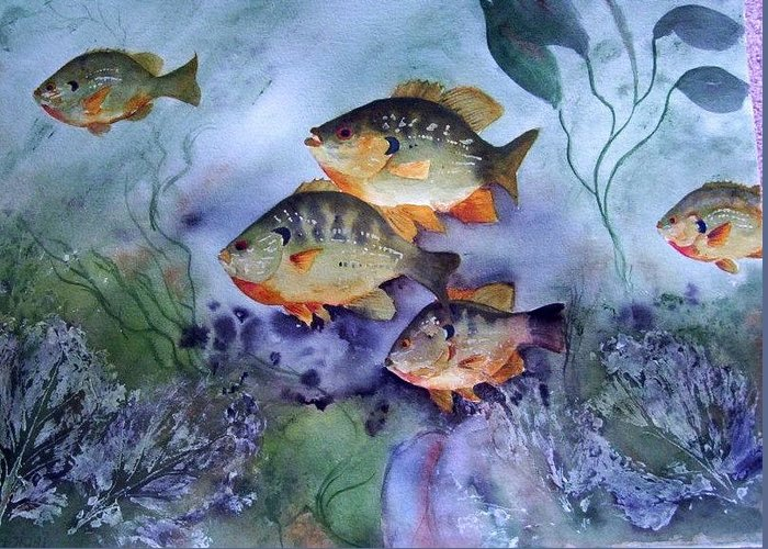 Original Greeting Card featuring the painting School's Out - Bluegills by Audrey Bunchkowski