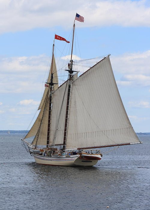 Seascape Greeting Card featuring the photograph Schooner Heritage Stearn by Doug Mills