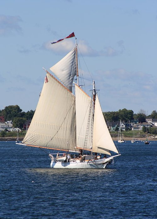 Seascape Greeting Card featuring the photograph Schooner Isaac H Evans by Doug Mills