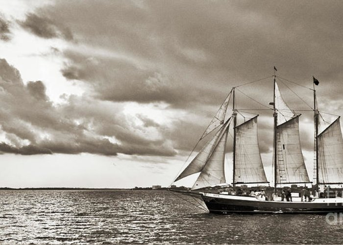 Tall Ship Greeting Card featuring the photograph Schooner Pride Tallship Charleston Sc by Dustin K Ryan