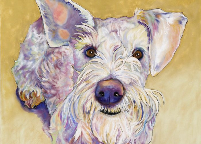 Schnauzer Greeting Card featuring the pastel Scooter by Pat Saunders-White