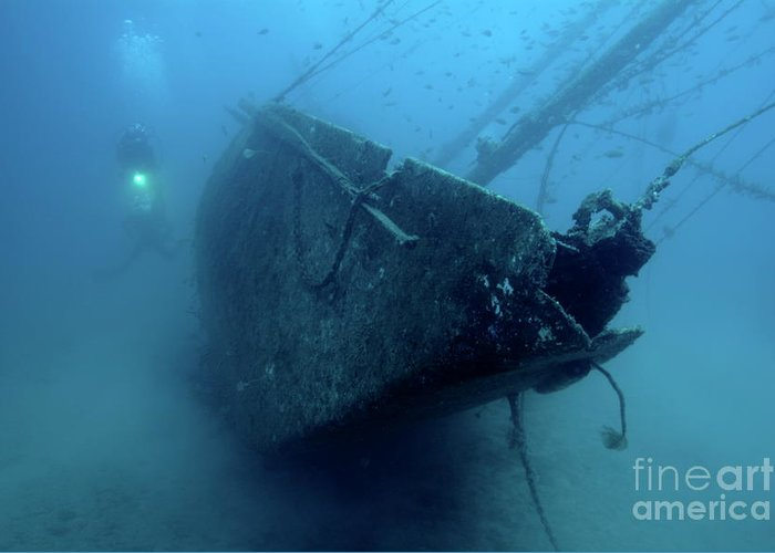 Abandoned Greeting Card featuring the photograph Scuba Diver Exploring Le Voilier Shipwreck by Sami Sarkis