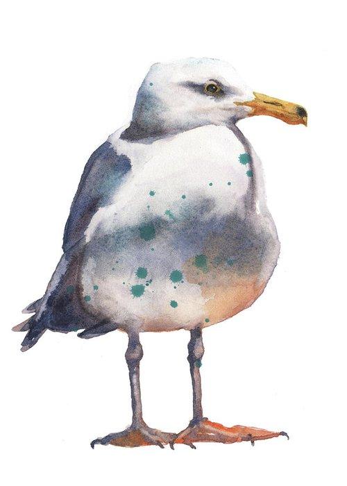 Avian Art Greeting Cards