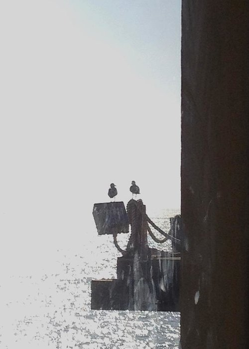 Seagulls Greeting Card featuring the photograph Seagulls On The Pier by Catherine Herold