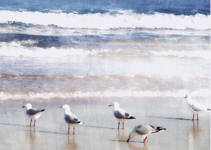 Landscapes Greeting Card featuring the photograph Seaspray by Holly Kempe