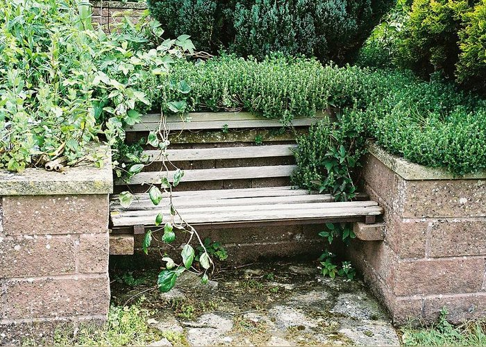 Bench Greeting Card featuring the photograph Secret Garden Bench by Lauri Novak