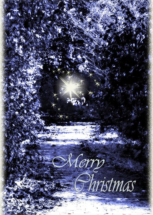 Fantasy Greeting Card featuring the photograph Secrets Christmas Card by Cathy Beharriell