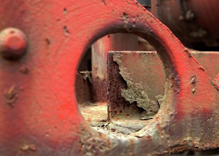 See The Rust Greeting Card featuring the photograph See The Rust by Karol Livote