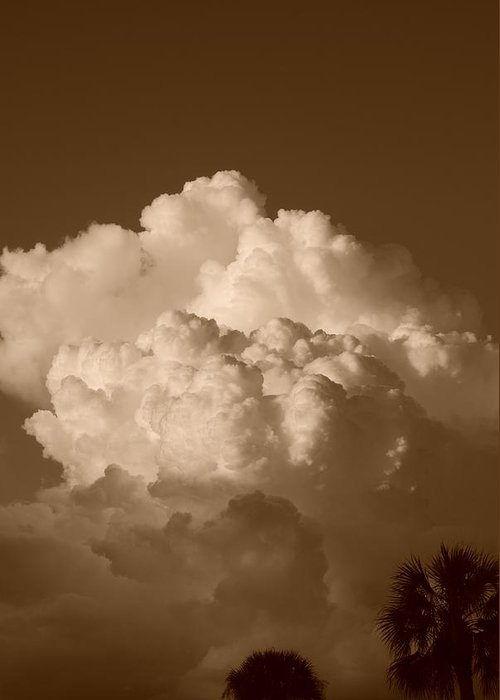 Sepia Greeting Card featuring the photograph Sepia Clouds by Rob Hans