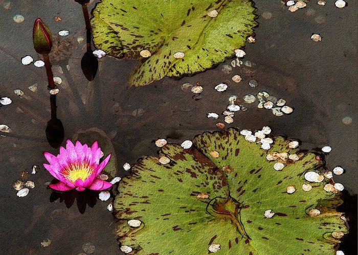 Serene Greeting Card featuring the photograph Serenity by Joe Bonita