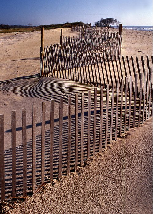 Fence Greeting Card featuring the photograph Serpentine by Skip Willits