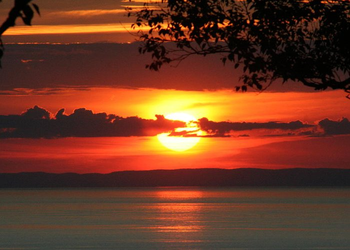Bay Of Fundy Greeting Card featuring the photograph Setting Sun On The Bay Of Fundy by Sue Long