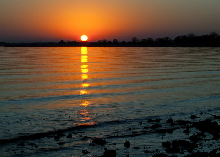 Sunset Greeting Card featuring the photograph Settling Sun by Karol Livote