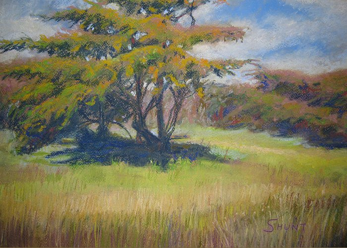 Tree Greeting Card featuring the painting Shade by Shirley Braithwaite Hunt