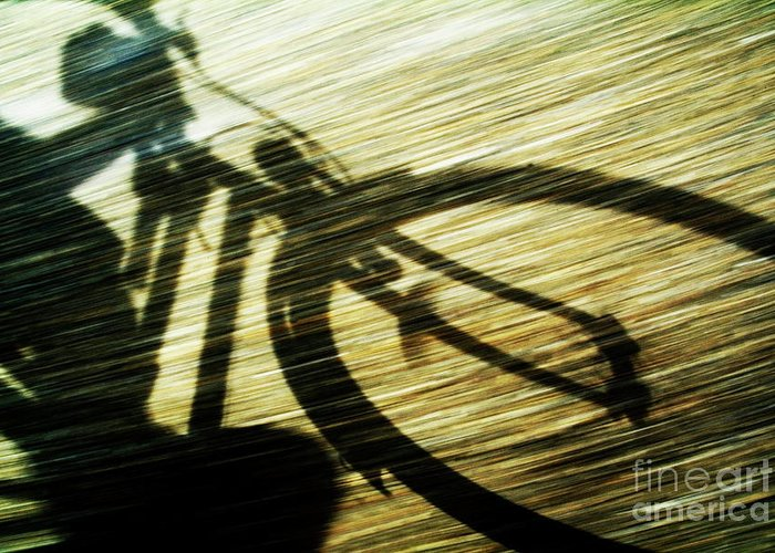 Active Greeting Card featuring the photograph Shadow Of A Person Riding A Bicycle by Sami Sarkis