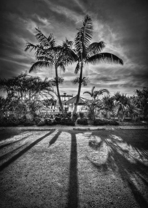 Boca Grande Greeting Card featuring the photograph Shadow Waltz by Evelina Kremsdorf