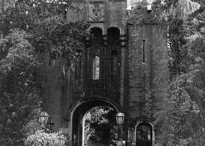Castle Greeting Card featuring the photograph Shady Castle Gate by Roy Anthony Kaelin