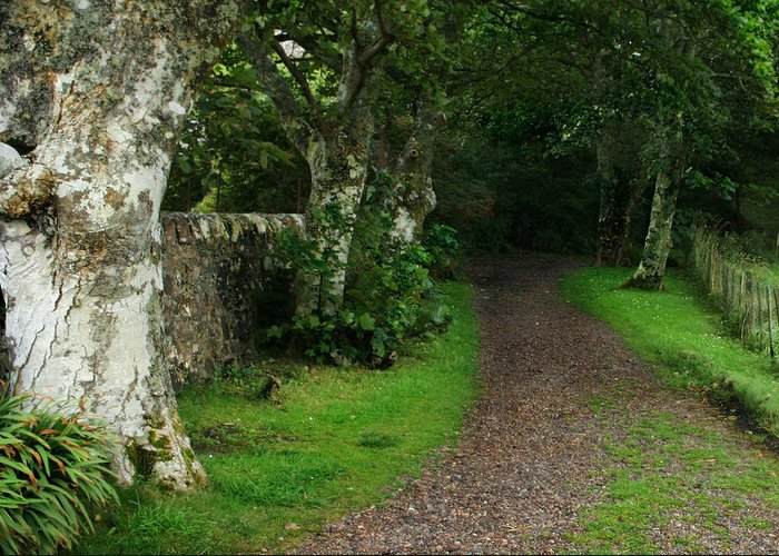 Scotland Greeting Card featuring the photograph Shady Lane by Warren Home Decor
