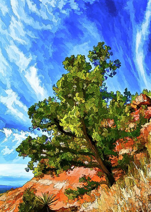 Nature Greeting Card featuring the photograph Shaman's Sentry by ABeautifulSky Photography by Bill Caldwell