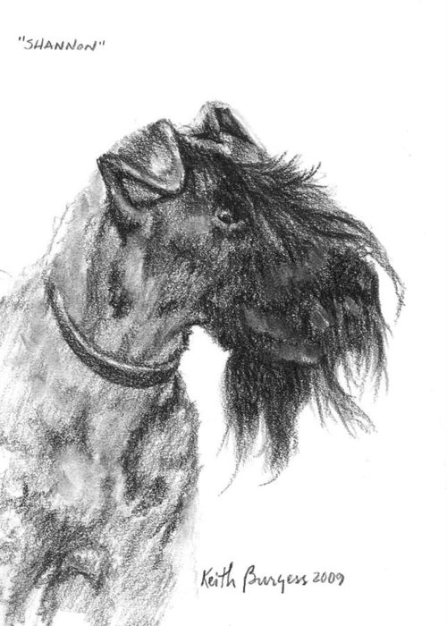 Dog Greeting Card featuring the drawing Shannon by Keith Burgess