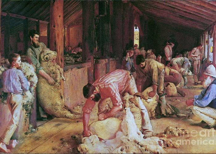 Pd Greeting Card featuring the painting Shearing The Rams by Pg Reproductions