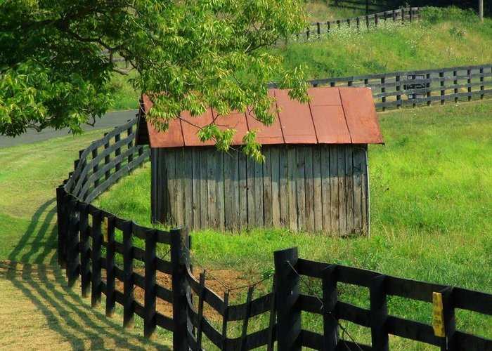 Fence Greeting Card featuring the photograph Shed And Fence by Michael L Kimble
