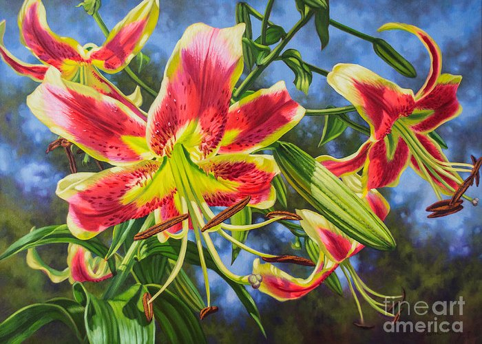 Hybrid Lily Greeting Cards