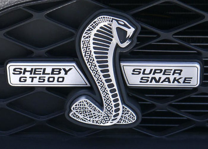 Shelby Super Snake Greeting Cards Fine Art America