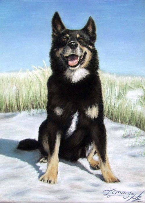 Dog Greeting Card featuring the pastel Shepherd Mix Timmy by Nicole Zeug