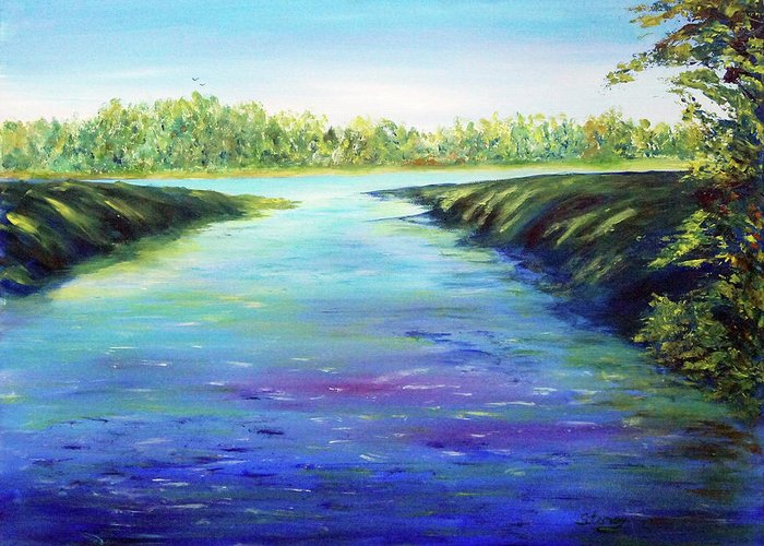 Water Greeting Card featuring the painting Shingle Creek by Tina Storey
